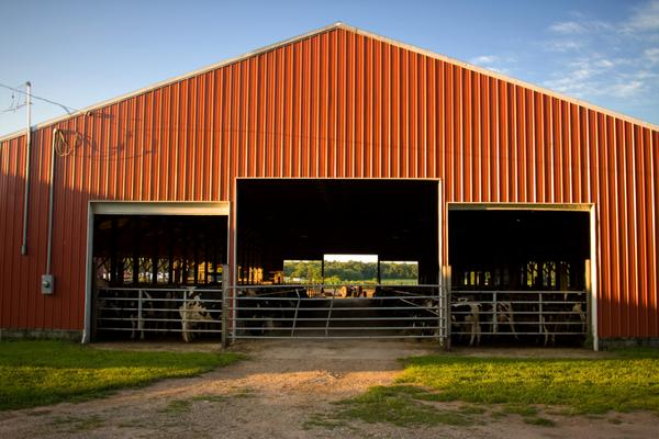 Horse-Barns-Seattle-WA