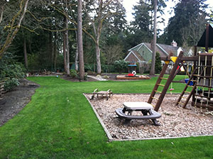 Landscape-Maintenance-Lakewood-WA