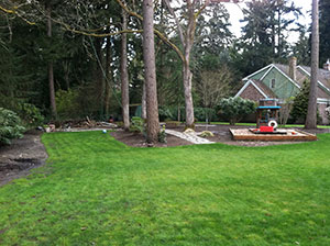 Landscape-Management-Lakewood