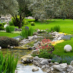 Landscaping-Plants-Lacey-wa