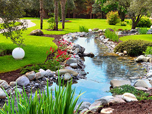 Landscaping-Plants-for-Sumner-wa