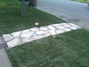 landscape-lighting-tacoma-wa